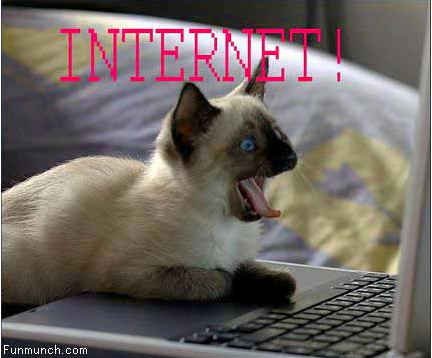 internet