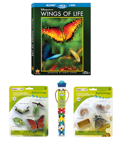 Wings of Life Prize Pack