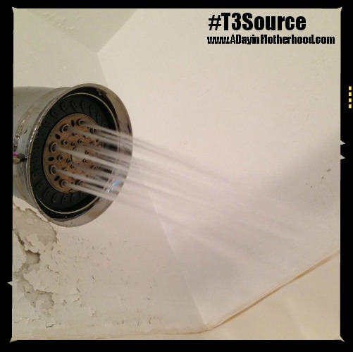 the t3 source shower filter is easy to install. Black Bedroom Furniture Sets. Home Design Ideas