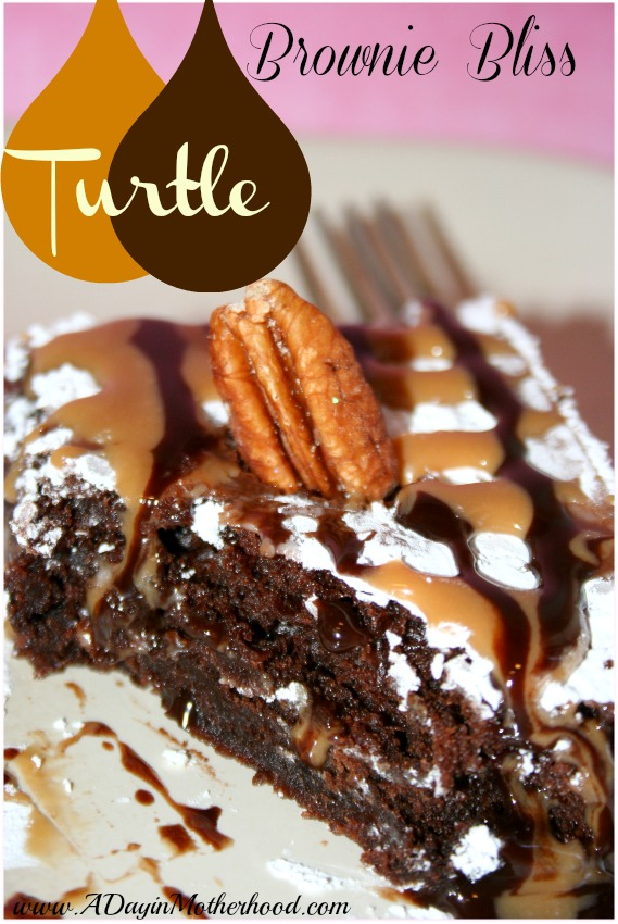 page for future reference these turtle brownies well i have no words ...