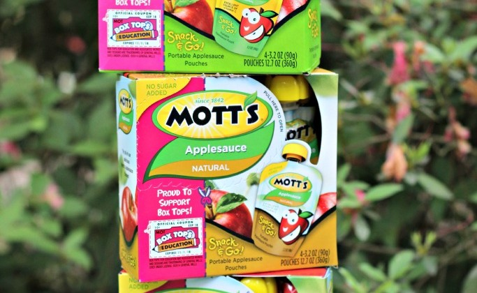 Trips with Kids are Entertaining and other Tales of Motherhood #spon @Motts