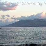 Snorkeling Maui: A Bird Island Experience