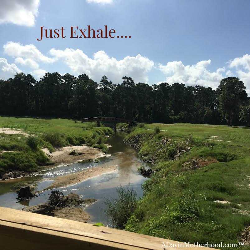 The views on the courses at the Woodlands Resort are just amazing... #WoodlandsResort ad