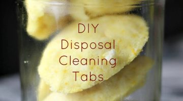 DIY Disposal Cleaning Tabs Recipe