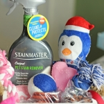 Welcome to the Family Pet Gift Basket Ideas