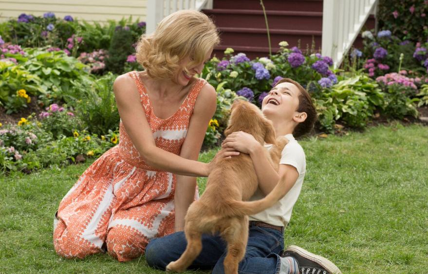 A Dog's Purpose is a heartwarming story