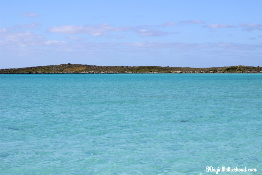 Who would not love this view on Castaway Cay?