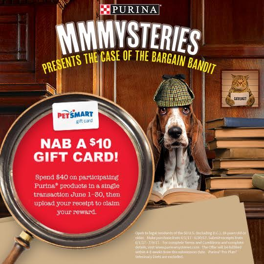 3 Way to Give Back to the Pets that Give Us So Much with Purina Mysteries