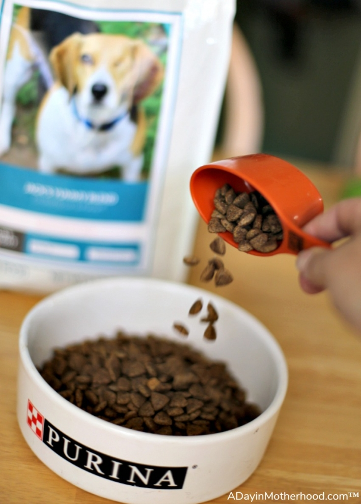 Are all Fillers in Dog Food a Bad Thing? One Eyed Jack Wanted to Know so we asked