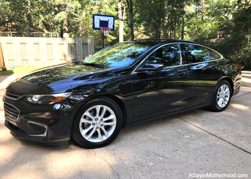 A Day at the Houston Aquarium with the Chevy Malibu