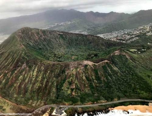 Going to Hawaii? A Blue Hawaiian Helicopter Tour is a MUST!