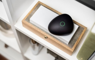 Dojo Cybersecurity Pebble Product Review lit up