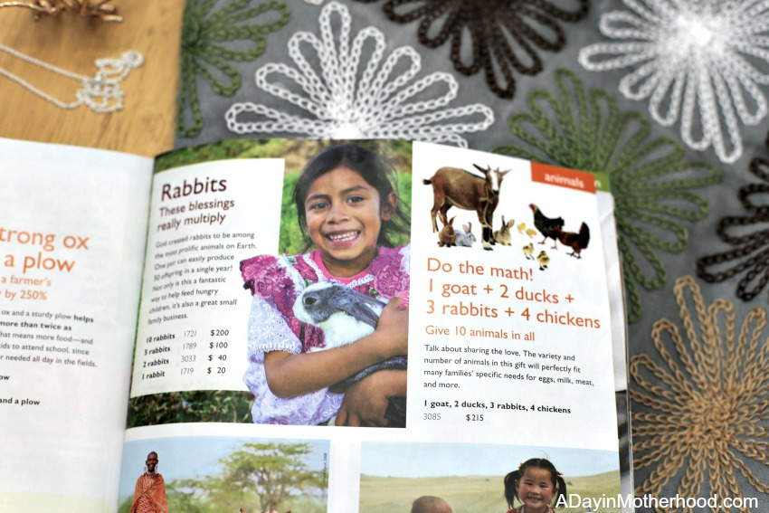 Find the Gifts that Give Back in the 2017 World Vision Gift Catalog