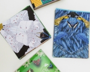 Fold and Fly All In One Origami Kits. ad
