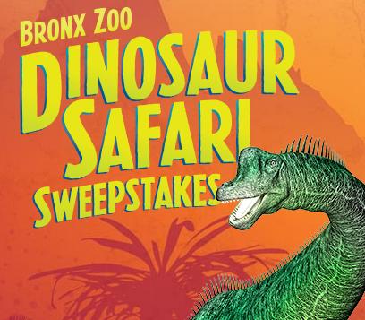 Bronx Zoo Sweeps