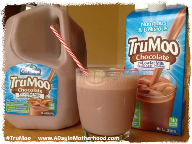 Chocolate Milk Chocolate Pudding #TruMoo