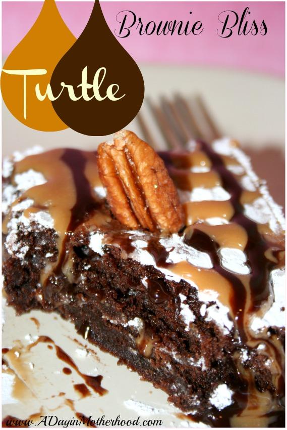 Turtle Brownie Bliss