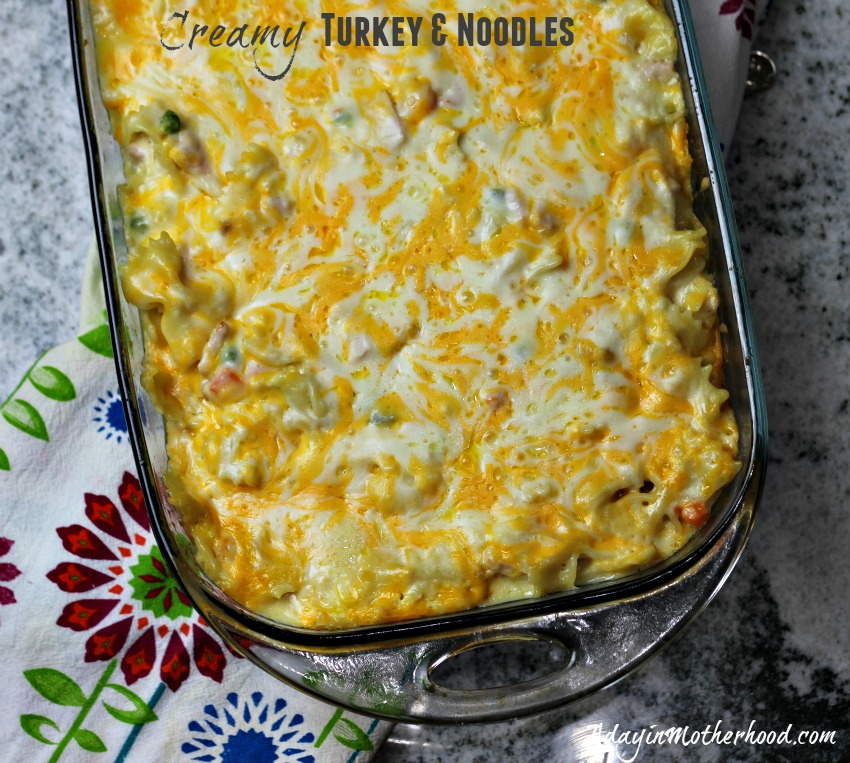Creamy Turkey & Noodles Recipe #CookingUpHolidays #ad