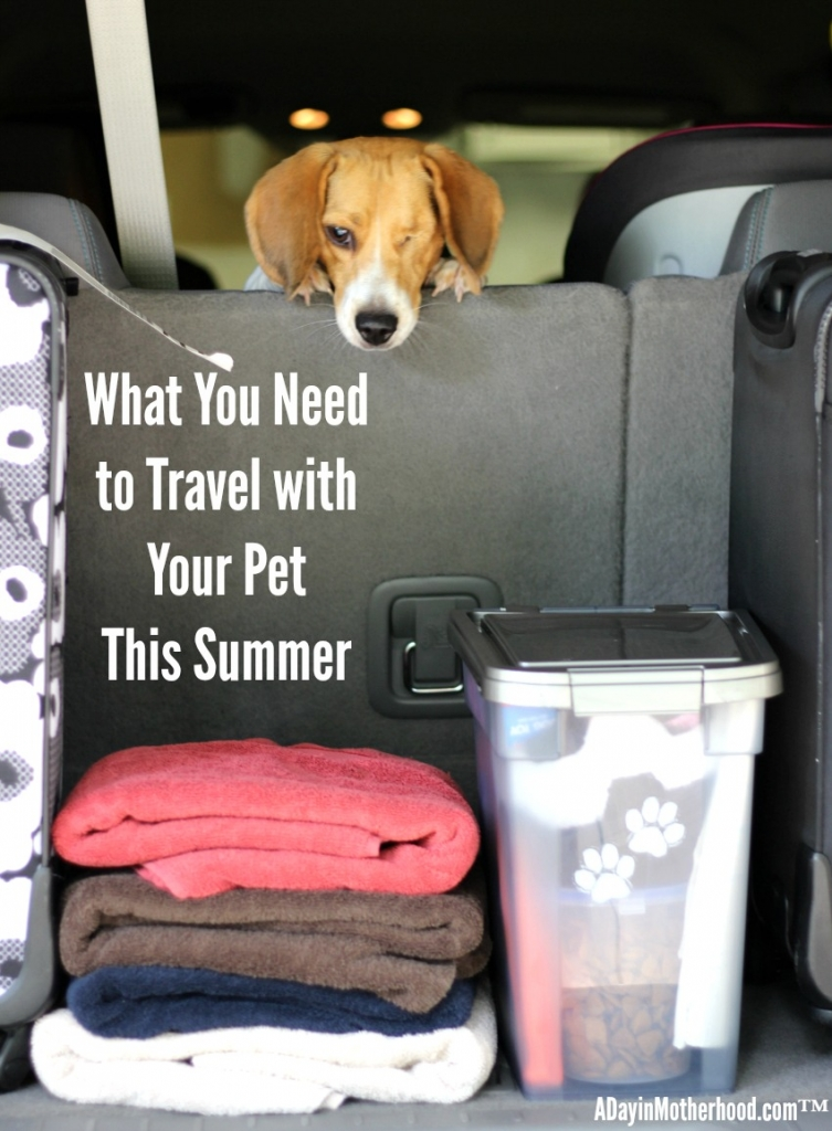My dogs love to go on road trips so I need to make sure that I have everything they need to make it a safe trip! Check out my tips! #PawsToSavor ad