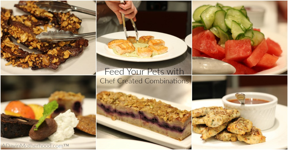 Make your pet happy with Purina and chef inspired meals #MeetPurina ad