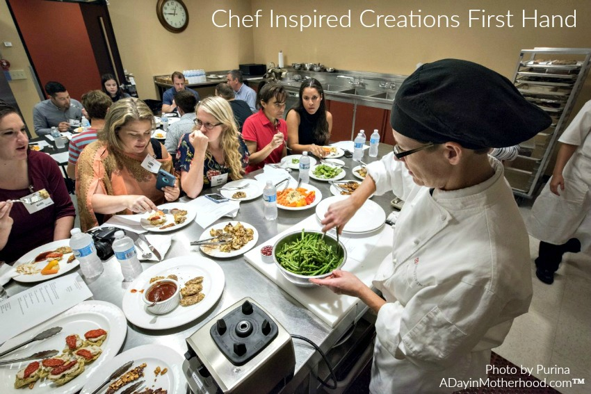 The chef inspired kitchen at Purina turns out the flavors of the food. #MeetPurina ad