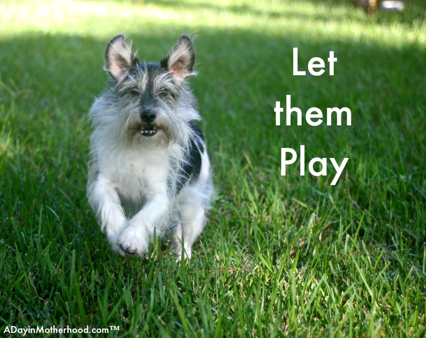 Let them play with BRIGHT MIND Adult 7+.