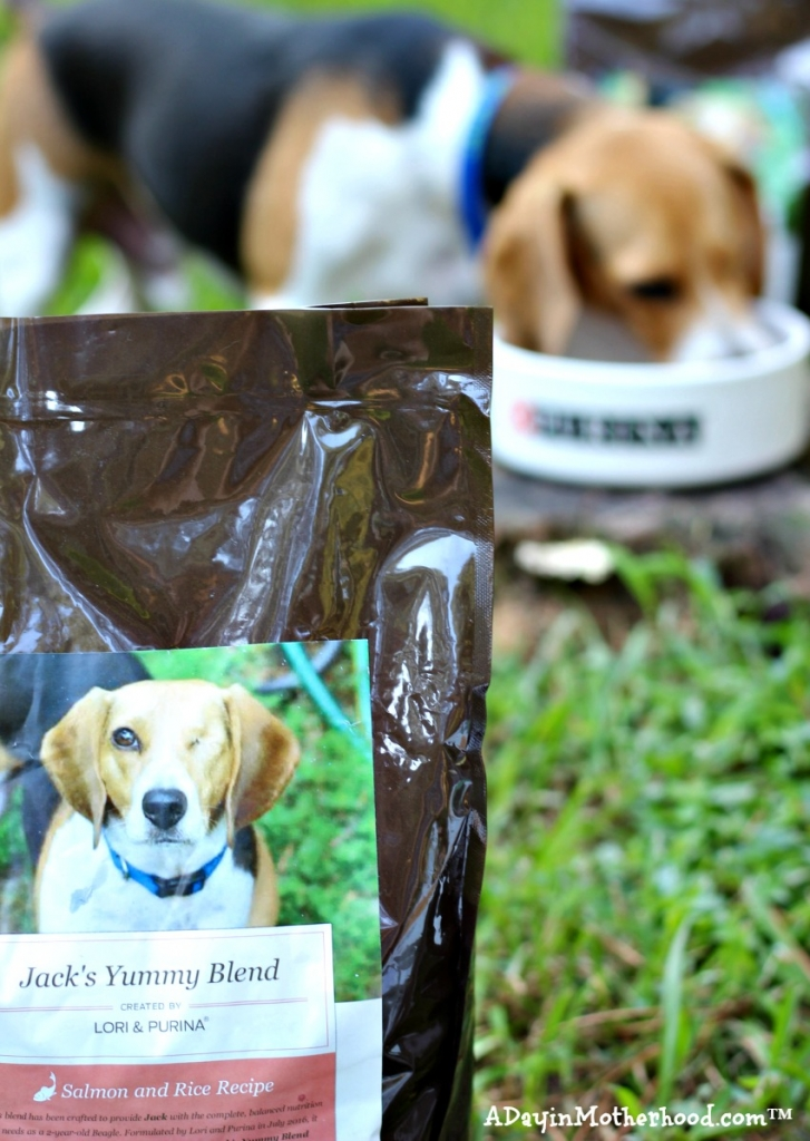 Purina Just Right is a specialty blend Purina makes for your dog! #DogsofJustRight ad