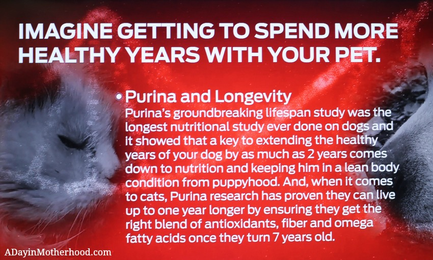 The nutrition in Purina pet foods were a focus of the Better With Pets Summit