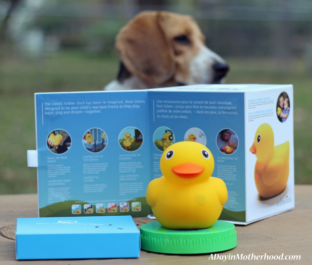 Edwin the Duck is fun for everyone