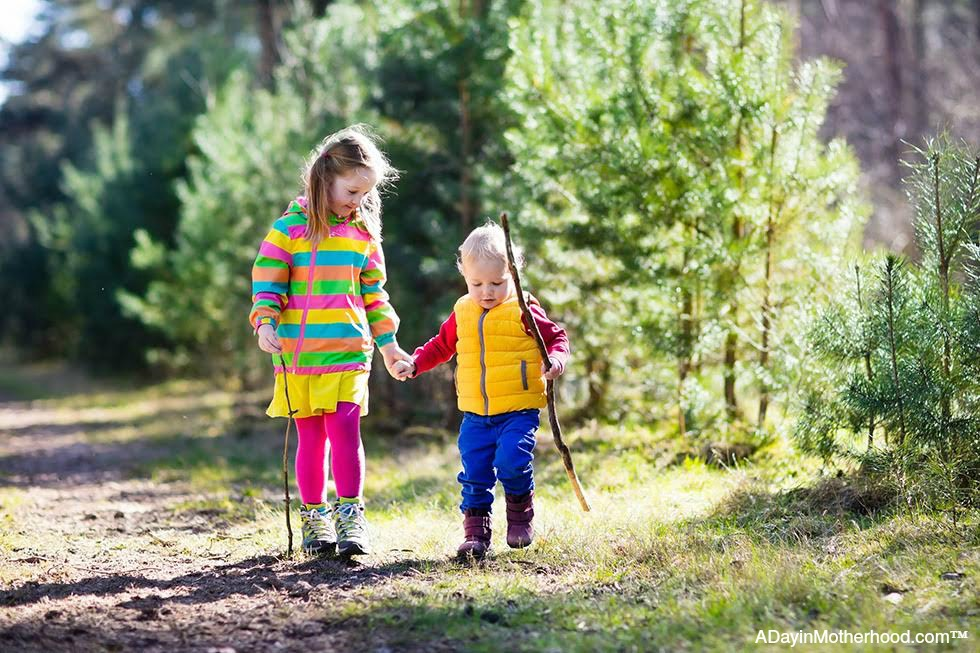 Day Hiking with Your Kids this Summer: The Benefits & the Logistics that can help you get there