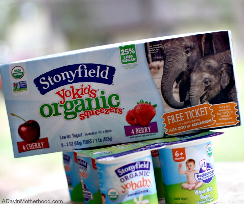 After School Snacks With Less Sugar that You Can Feel Good About with Stonyfield
