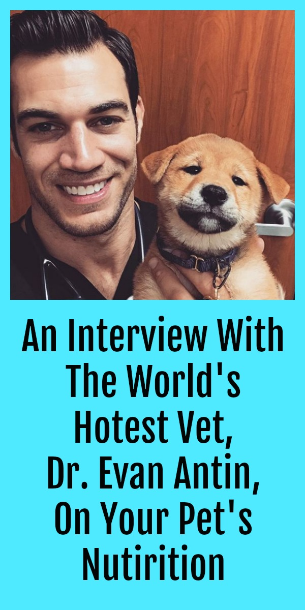 An Interview with World's Hottest Vet, Dr. Evan Antin, on Your Pet's Nutrition Pinterest