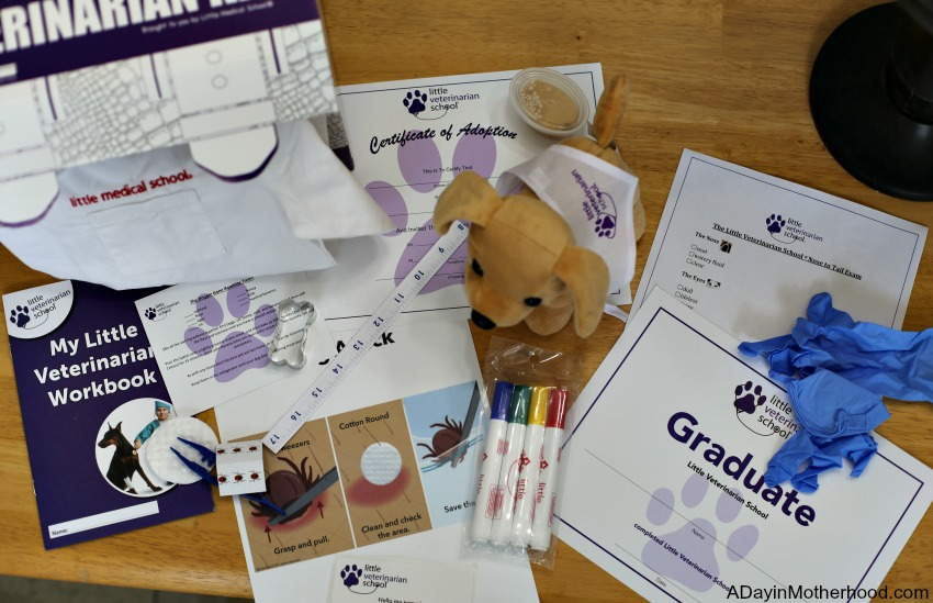 My Little Veterinarian Kit Teaches Love and Care for Pets + WIN a Brain Hat-terBike Helmet
