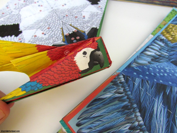 Fold and Fly Macaw Parrot. ad