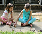 Let Their Imagination Soar with Wild Animals from Schleich Figurines that my kids love