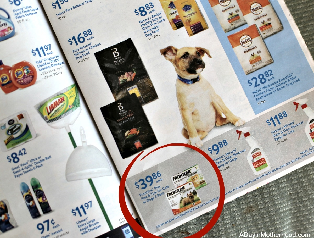 5 Tips to Help Make Multiple Dogs Work for Your Family Walmart circular