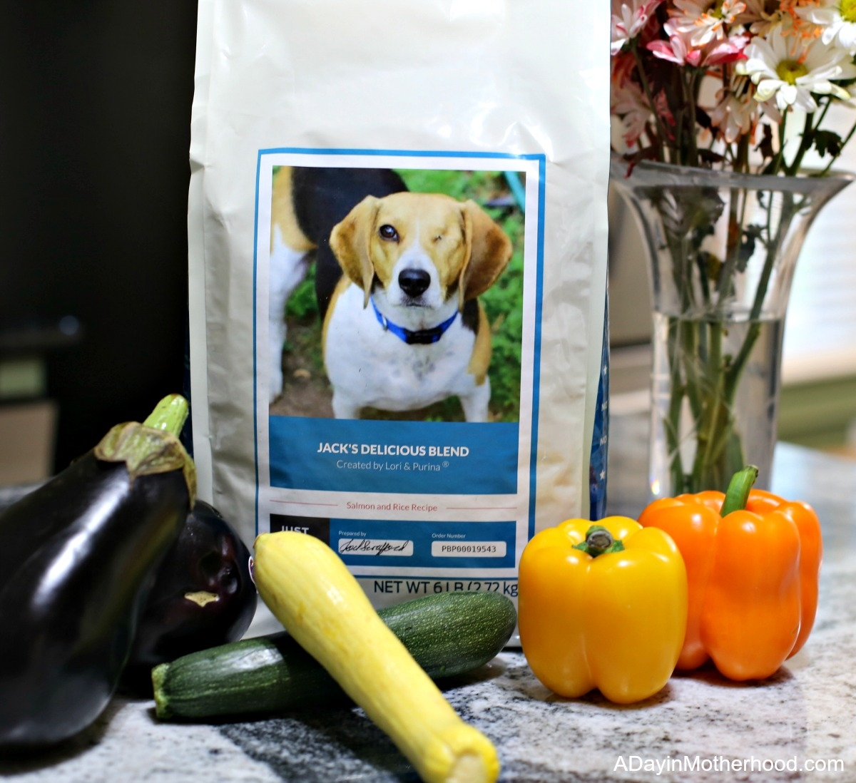 Turkey Vegetable Ricotta Bake Recipe with Purina
