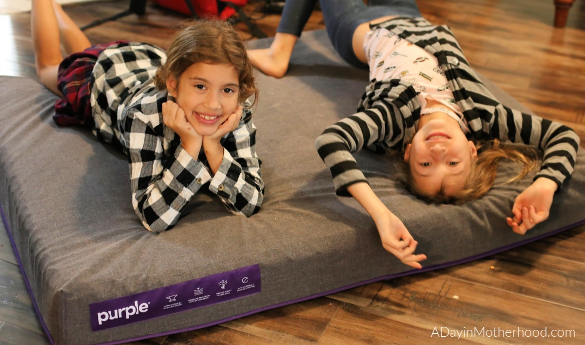 Spoil Your Dogs with a Purple Dog Bed and kids?