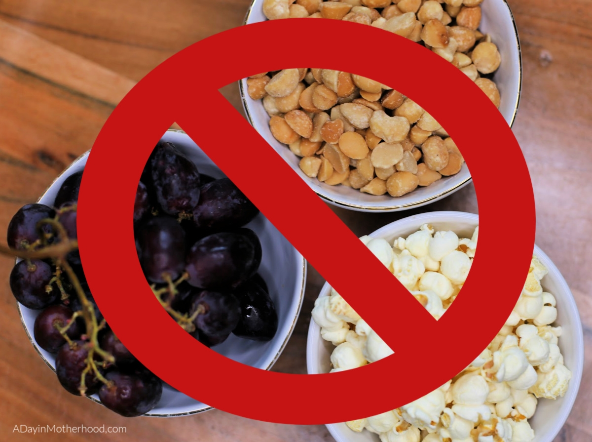5 Foods Your Should Never Feed Your Dog and What You Can Feed Them - no no's