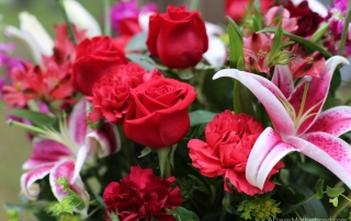 Valentine's Day Blooms with Beauty with Teleflora
