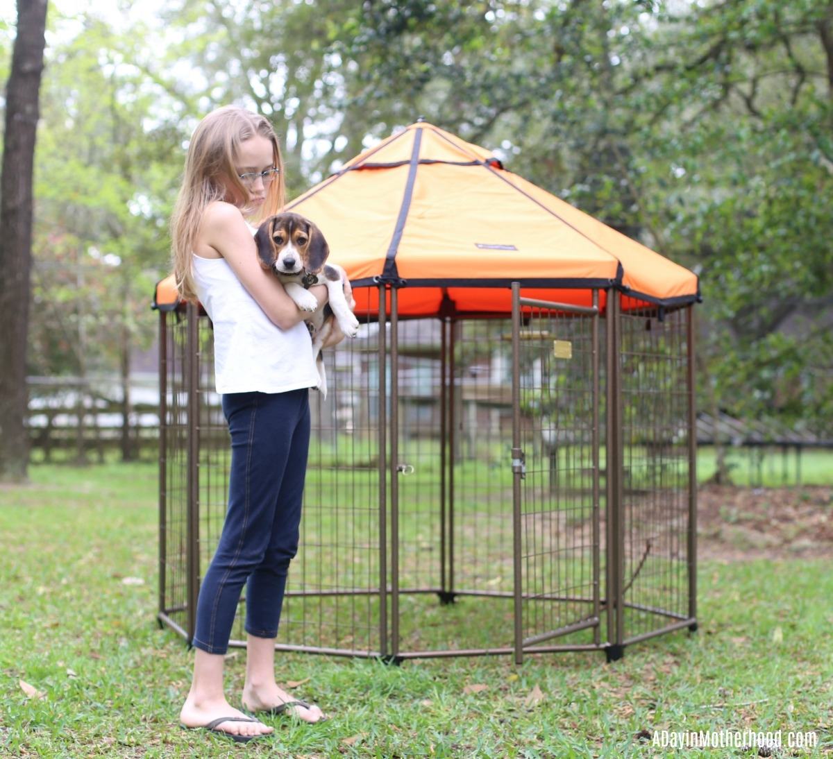 Spoil Your Dog in a Relaxing Kennel from the The Pet Gazebo with kids too