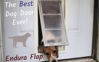 Endura Flap can handle all of my dogs