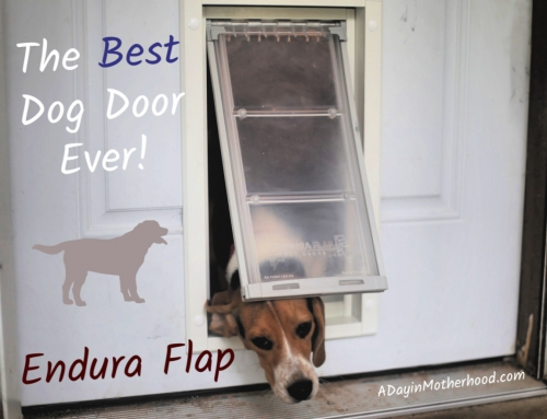 The Dog Door That Can Handle my Pack! {Endura Flap Review}