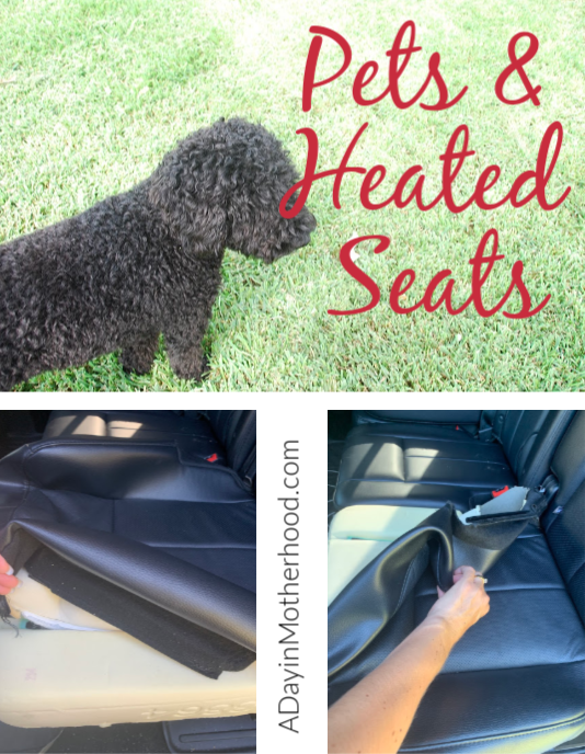 Heated seats and pets